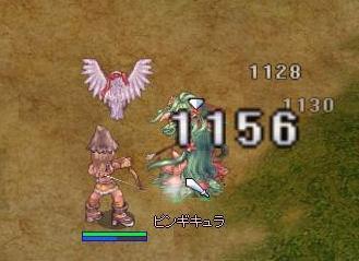 ぴんぎ6.28.JPG